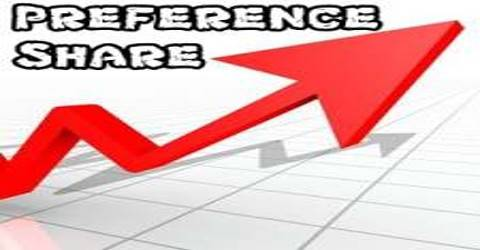 Preference Shares in a Private Limited Company