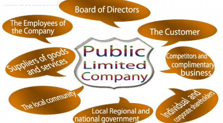 What are the major advantages (pros/merits) for Public Limited Company?