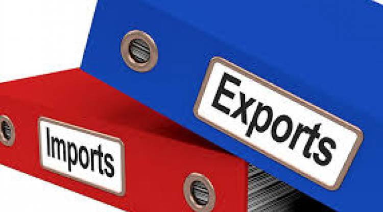 WHO WILL ISSUE IMPORT EXPORT CODE?