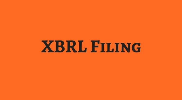 WHAT IS THE INFORMATION REQUIRED FOR XBRL FILLING?