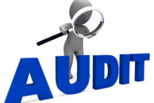 Who can be appointed as statutory auditor to a company?