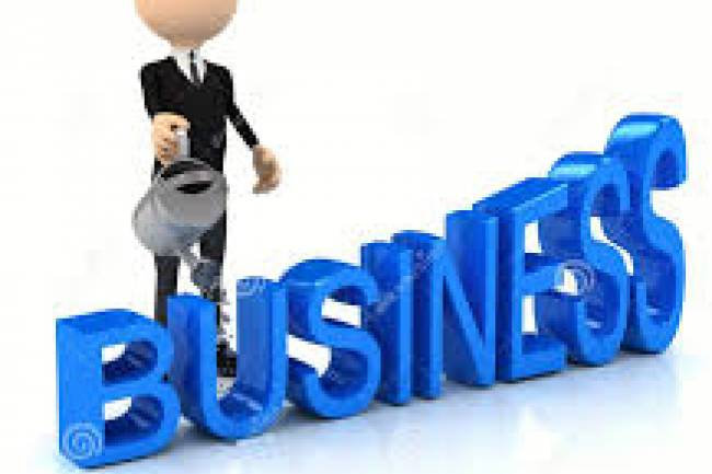 Factors to Consider While Choosing a Business Type