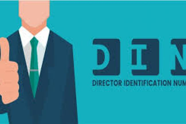How to Change DIN (Director Identification Number) Details