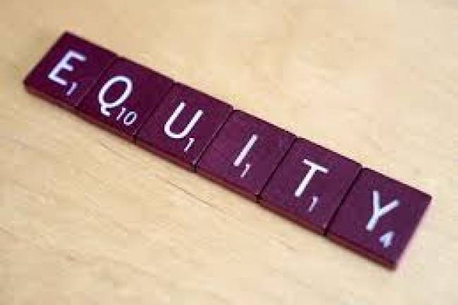 Issue of Sweat Equity Shares for a Private Limited Company