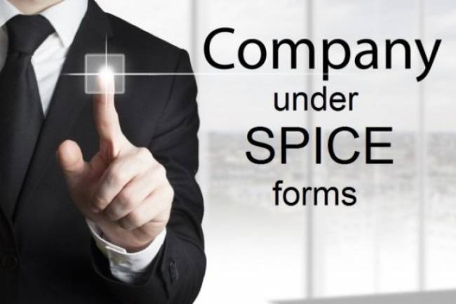 Frequently Asked Question (FAQs) on SPICe Forms for Company Registration in India