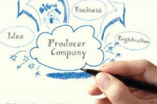 Producer Company Registration Process in India