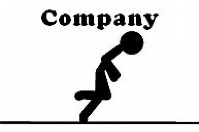 Privileges of One Person Company