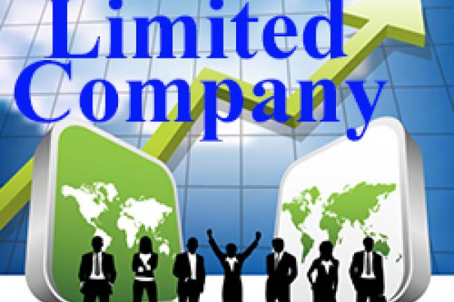 Can procedure for public limited company registration be done totally online?