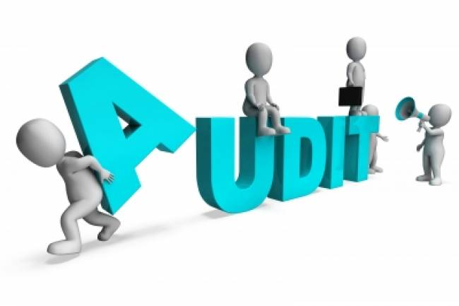 WHAT IS THE REQUIREMENT FOR APPOINTING AN AUDITOR?