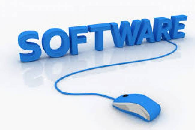 Setting up a wholly owned subsidiary of a foreign company(pvt) that sells software.
