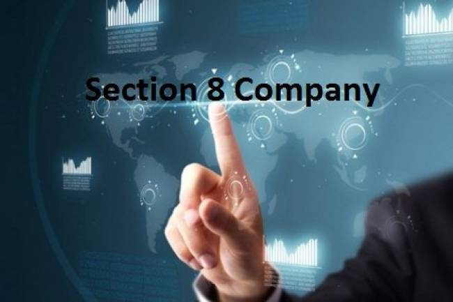 What is the advantage of starting a non-profit organisation as a Section 8 company?