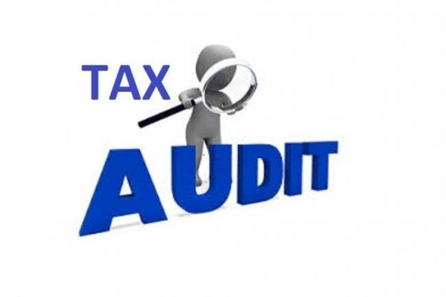 What happens in a tax audit?