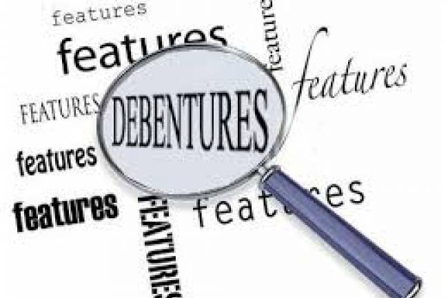 Can a private limited company issue debentures?